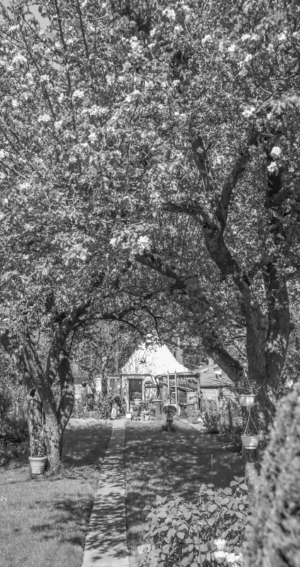 Kaisenhaus im Schrebergarten